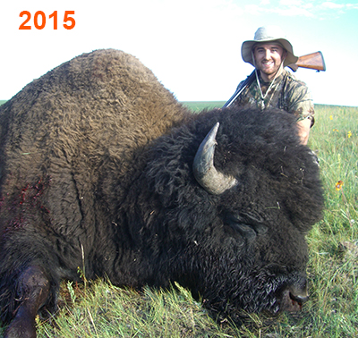 Hunter with his bison